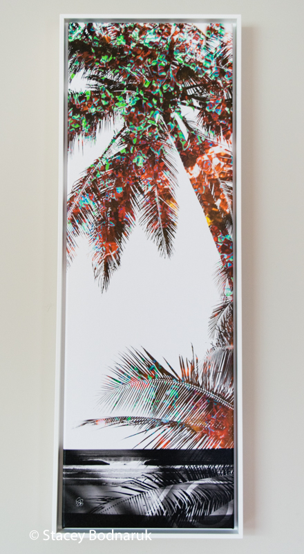 Timeless Palms