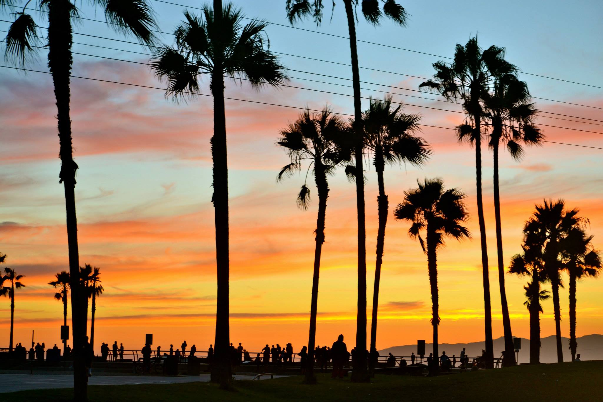 Venice-Admiral-Suites-Venice-Beach-Santa-Monica-Los-Angeles-sunset-at-the-beach