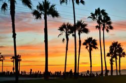 Venice-Admiral-Suites-Venice-Beach-Santa-Monica-Los-Angeles-sunset-at-the-beach