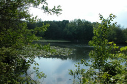 Pond3!