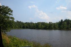 pond 1a