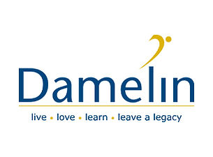 Damelin-Website-Logo.jpg