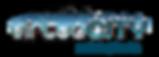 virtuoCITY Logo - FINAL.png