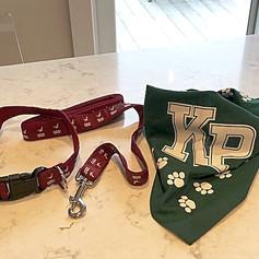 Pet collar, Leash and Bandana