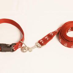 Woven Dog Collar and Leash