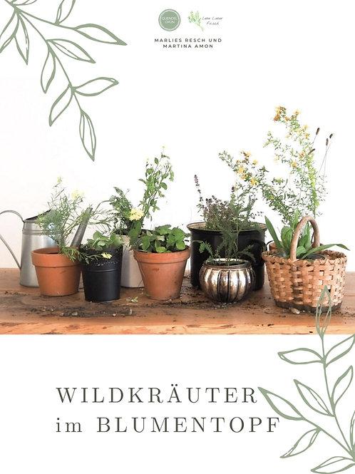 Ebook: Wildkräuter im Blumentopf