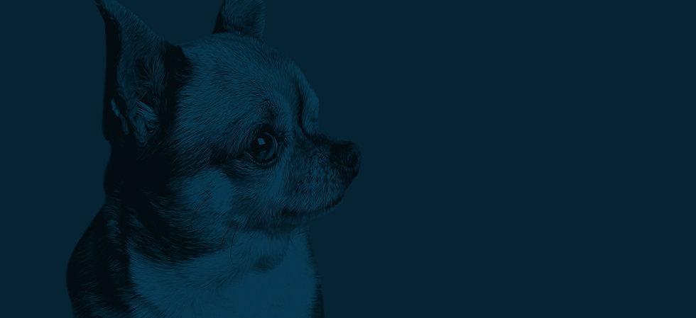 TUPPY_Blue_FLAT_edited.jpg