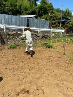 豊かな土壌作り~堆肥を蒔く~