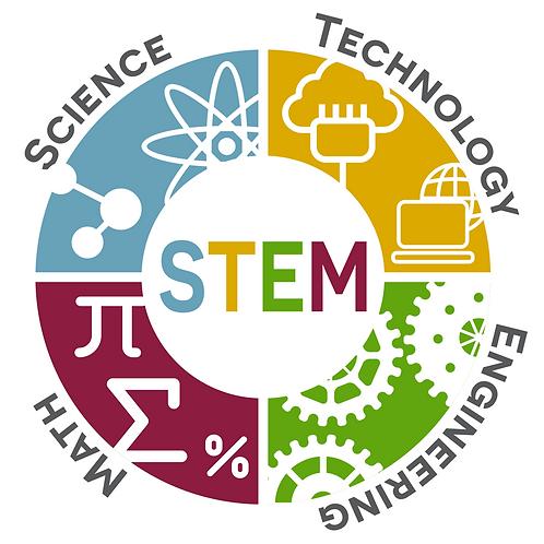 STEM Yaz Kampı