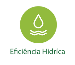 eficiencia hidrica.png