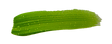 grüner_strich_3.png