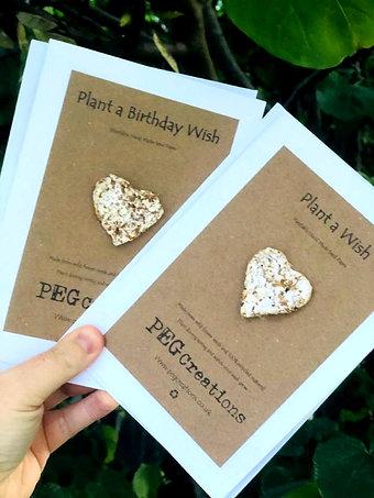 Eco Friendly Plant a Wish Cards