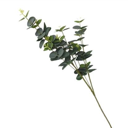 Single Stem Eucalyptus With 7 Heads