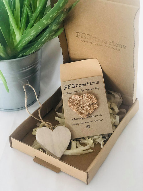 Plant A Mothers Day Wish Gift Box