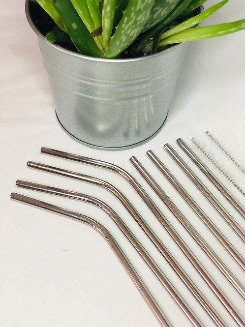 Eco Friendly Reusable Family Metal Straw Set
