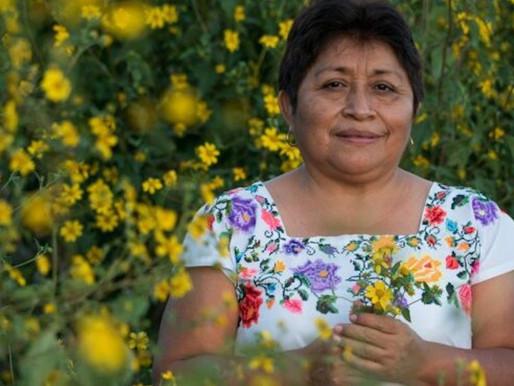 Campechana se convierte en la primera mujer mexicana en recibir el premio Goldman.