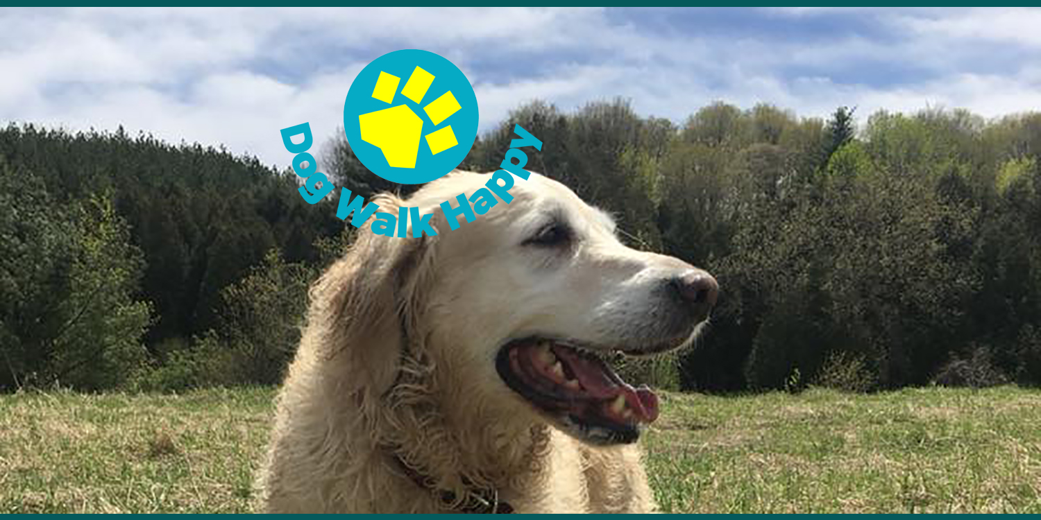 DWH site smiley dogs 10x5 01