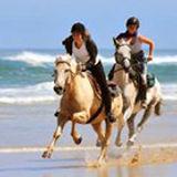 royal-club-equestre-anfa.jpg