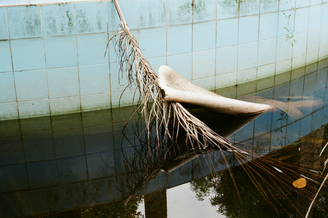Taking a dip  2018 Hue abandoned waterpark, Vietnam C-type print from negative