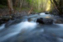 King Range Gitchell Creek.jpg
