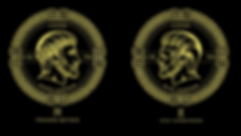 gold coin wrapping paper logo.png