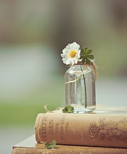 close-up-photo-of-flower-on-bottle-18317