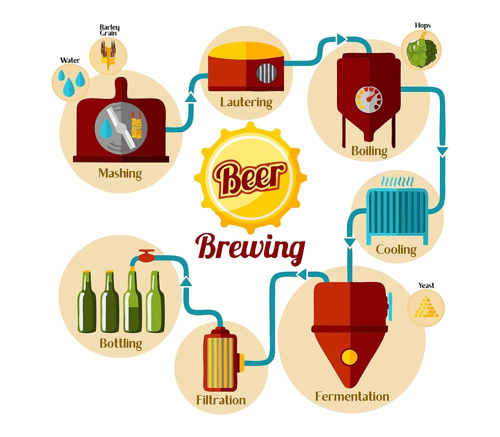 Simple Process chart of brewing beer, brewing beer, brewer, beer, craft beer
