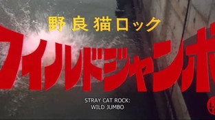 Stray Cat Rock: Wild Jumbo (1970)
