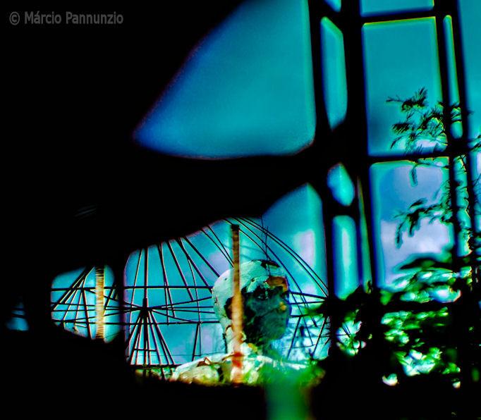 no_jardim_dos_enjeitados_são_sebastião_i