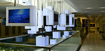 Microsoft Interactive Installation