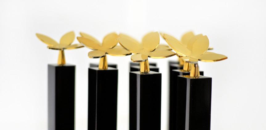 Jana Voice Awards