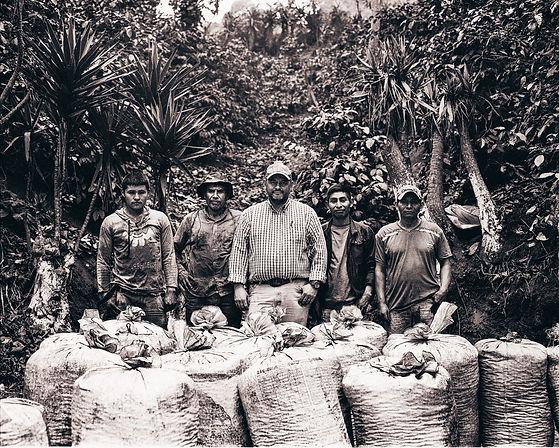 GuatemalanCoffee-MamiyaScanRB67-1.jpg