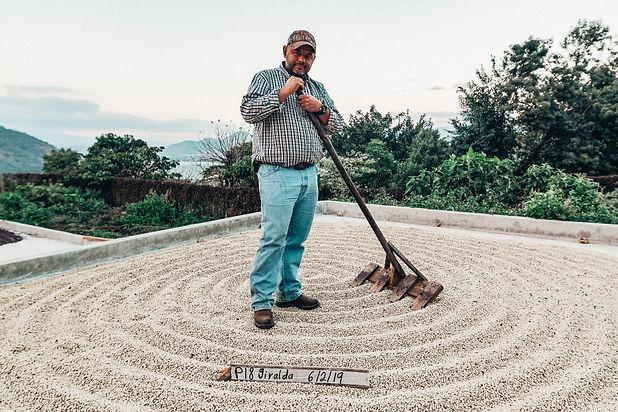 GuatemalanCoffee-0695.jpg
