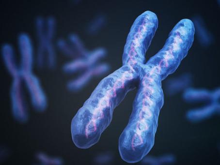 Polimorfismos vs Mutaciones. ¿Qué significan?