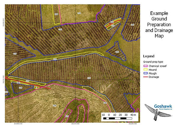Forestry new planting aerial map