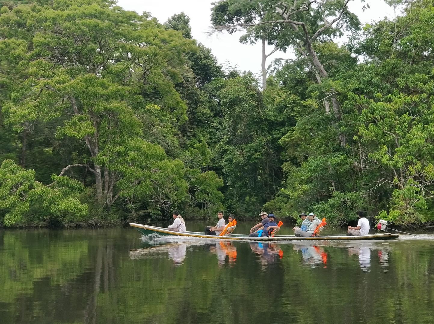 Exploring the Amazon Jungle