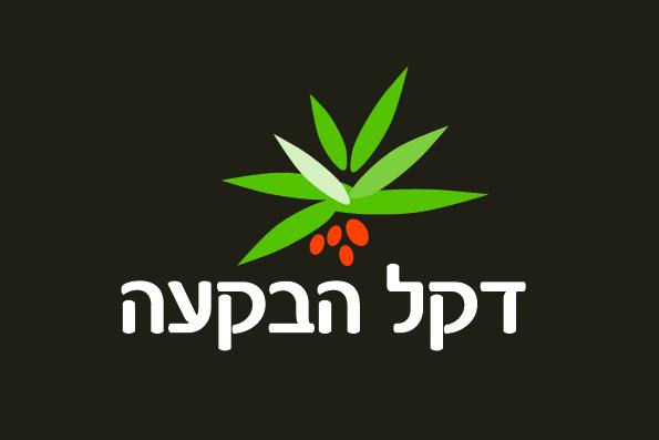 עיצוב לוגו לחוות הדקלים - דקל הבקעה