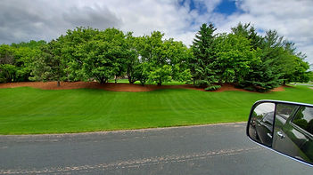 Landscaping Hastings Mn