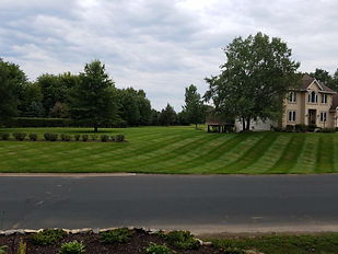 Proffesional Mowing In Hastings MN