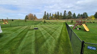 Lawn Mowing Cottage Grove MN