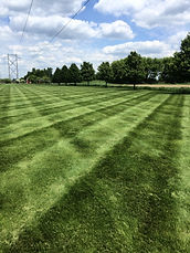 Lawn Mowing in Hastings MN