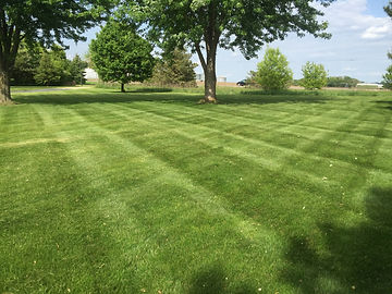 Lawn mowing in Cottage Grove MN