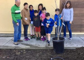 162 Trees Planted! Join Our Campaign….