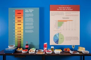 The Hidden Water Scale reveals how many gallons of water it takes to produce different foods. The scale lights up when you place a plate of food on it and you can compare different foods such as chicken and beef, or white and brown rice. I overheard many people resolving to change their eating habits after using the scale. Photo credit: Joel Bartlett