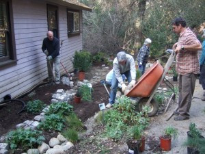 Native Garden Installation at Los Altos' Redwood Grove Nature Preserve