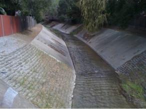 GreenTown Los Altos Adopts a Section of Permanente Creek
