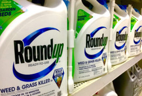 The Round Up on Roundup