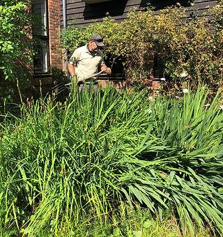Mick Gardening 3.jpg
