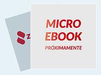 zcanit-microebook-plantilla-3.jpg