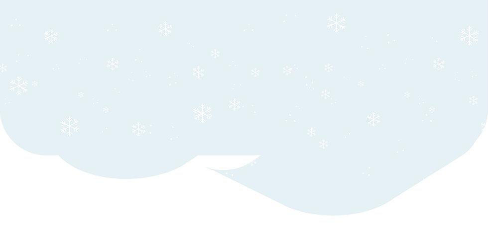 Armado-Zcanit-Navidad-2020_1.jpg